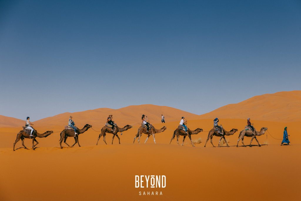 beyond-sahara-2017-watermarked-154 copy
